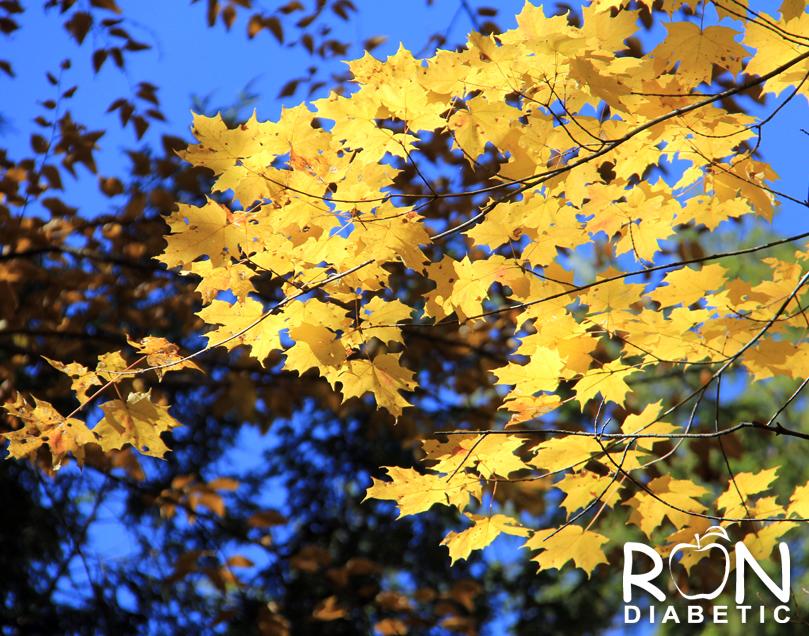 Канадская-осень_3