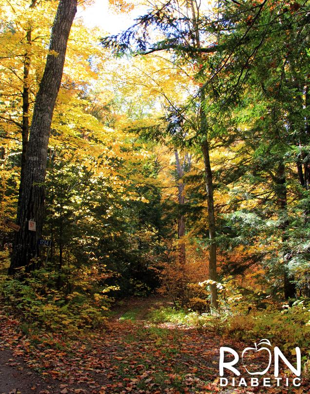 Канадская-осень_7