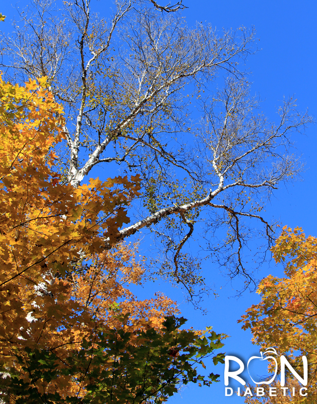 Канадская осень