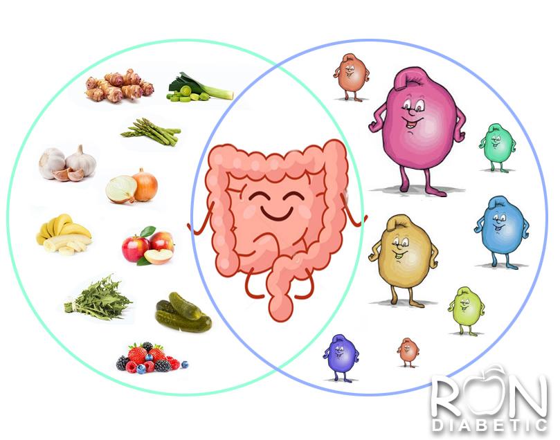 Пробиотики и пребиотики: в чем разница и зачем они нужны диабетикам